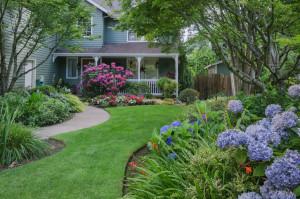 lawn care, lawn mowing, Bellingham WA